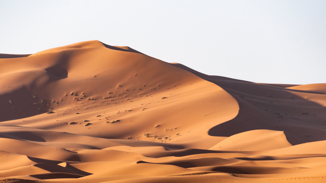 Grumbling in the Desert: 5 Tips to Not Complain During the Waiting