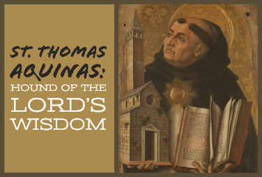 St. Thomas Aquinas: Hound of the Lord's Wisdom