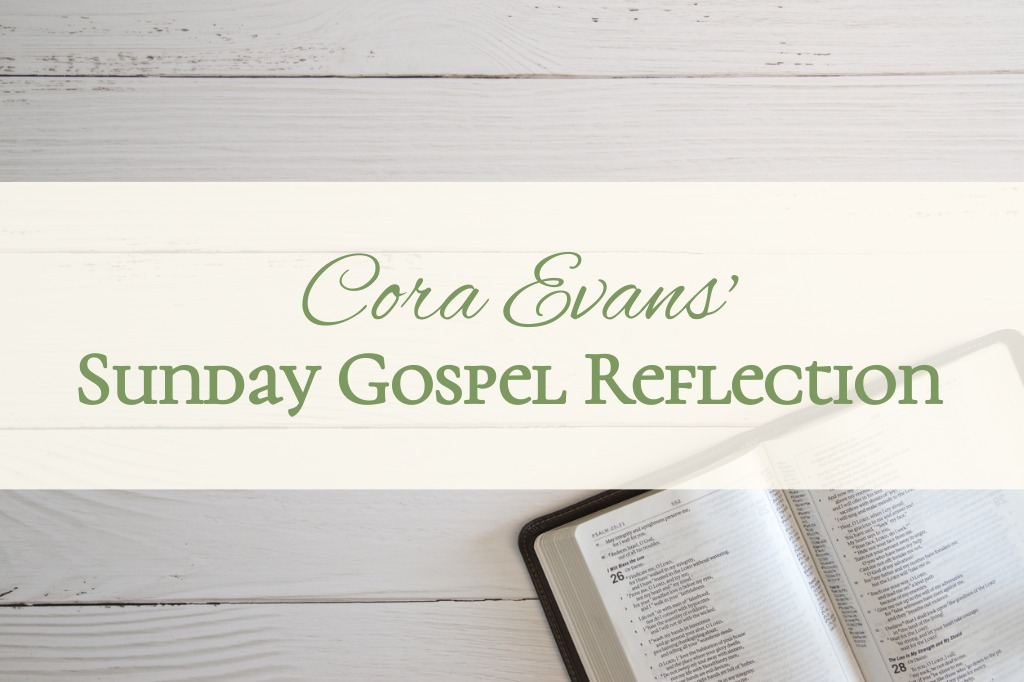 Sunday Gospel Reflection July 14